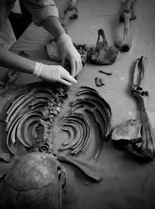 Fundación de Antropología Forense 4097  GEA